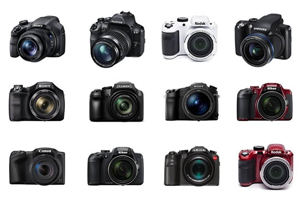 digitalkamera testbericht stiftung warentest test bridge und digitalkameras 2010. Black Bedroom Furniture Sets. Home Design Ideas